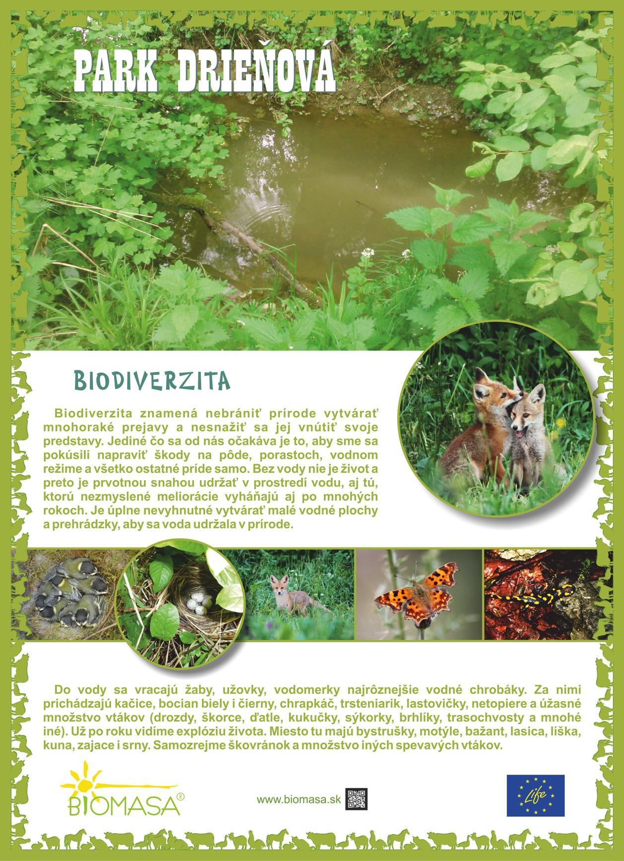 medium-promo-biomasa-park-drienova_panel-2